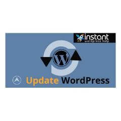 Best Update WordPress Techniques