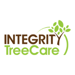 Outstanding Tree Services in Indian Trail